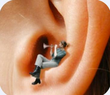 Herb for ringing in the ears indicate